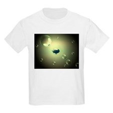 blimp fanatsy 1 Kids T-Shirt