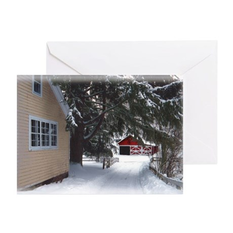 sg snow house2 19x12.png Greeting Cards (Pk of 20)