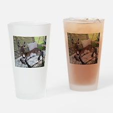 Lazy Ass Drinking Glass