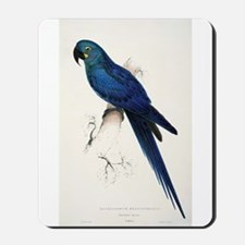 Lears Macaw Mousepad