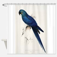 Lears Macaw Shower Curtain