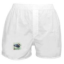 Sand Piper Bird Boxer Shorts