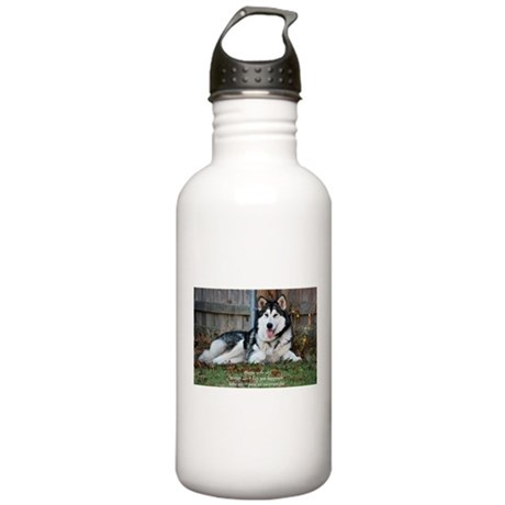 Proceeds Donated to TAMAL Stainless Water Bottle 1