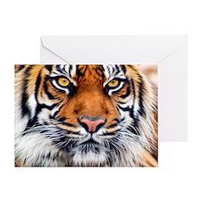 Male Siberian Tiger Greeting Card