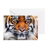 Tiger Greeting Cards (10 Pack)