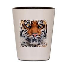 Male Siberian Tiger Shot Glass
