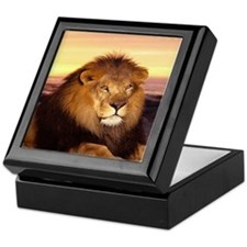 Unique Animals lions Keepsake Box