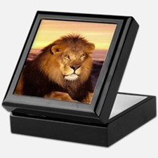 Cute Wildlife Keepsake Box