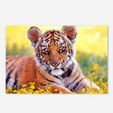 Tiger Baby Cub Postcards (Package of 8)