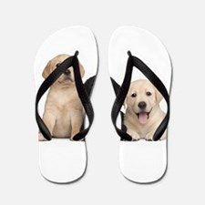 Labrador puppies Flip Flops