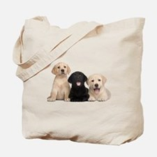 Labrador puppies Tote Bag