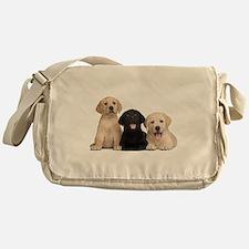 Labrador puppies Messenger Bag