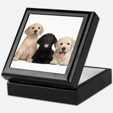 Labrador puppies Keepsake Box