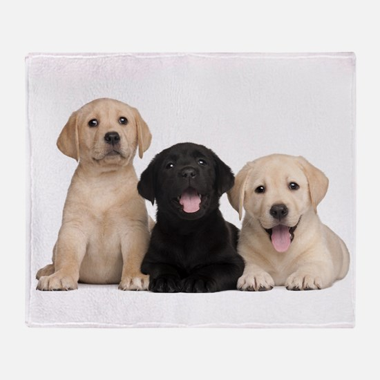 Labrador puppies Throw Blanket
