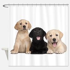 Labrador puppies Shower Curtain