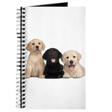 Labrador puppies Journal