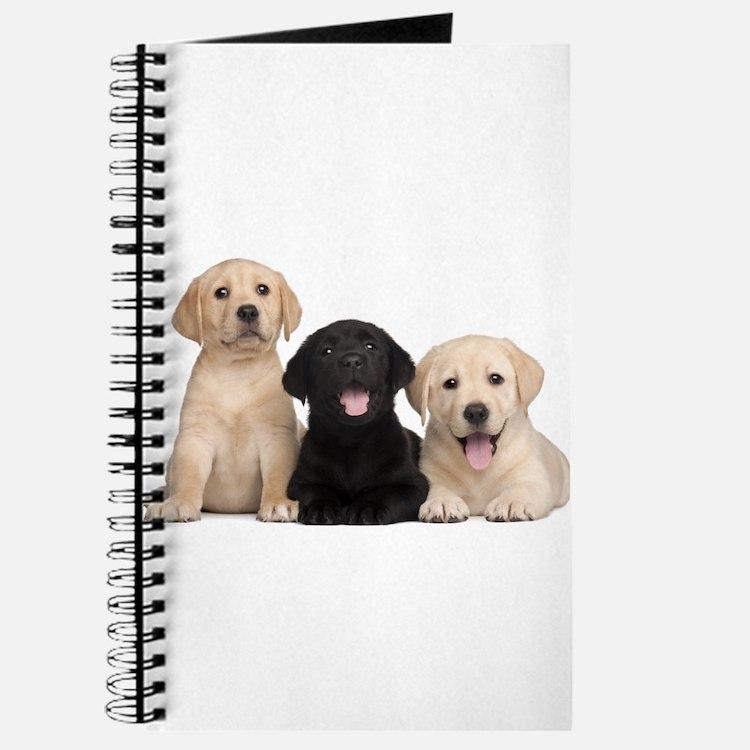 Labrador puppies Journal
