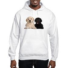 Labrador puppies Hoodie