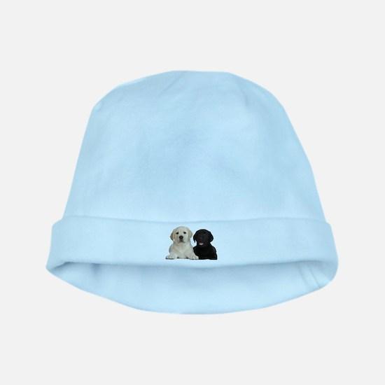 Labrador puppies baby hat