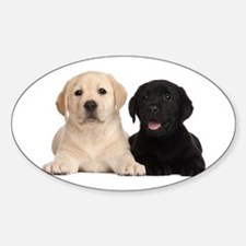 Labrador puppies Sticker (Oval)