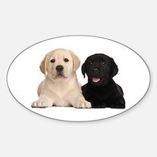 Labrador puppies Decal