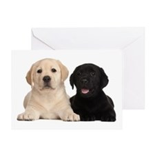 Labrador puppies Greeting Card