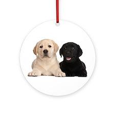 Labrador puppies Ornament (Round)