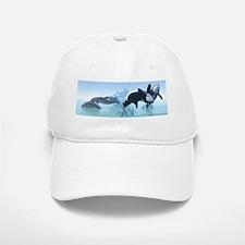 Dolphins and Orca's Baseball Baseball Cap