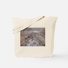 Beaver Damming Tote Bag