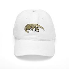 Anteater Baseball Cap