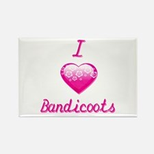 I Love/Heart Bandicoots Rectangle Magnet