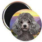 Poodle Meadow 2.25