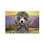 Poodle Meadow Rectangle Magnet (10 pack)