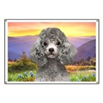 Poodle Meadow Banner