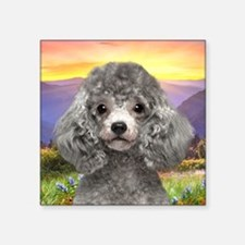 "Poodle Meadow Square Sticker 3"" x 3"""