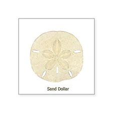 "Sand Dollar Logo Square Sticker 3"" x 3"""
