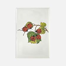 Ladybugs on Leaves Rectangle Magnet