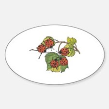 Ladybugs on Leaves Oval Decal