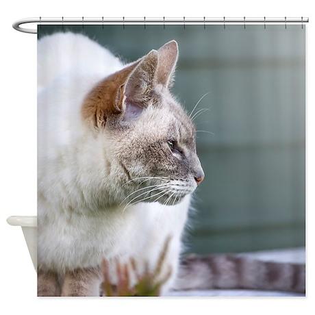 curious cat Shower Curtain