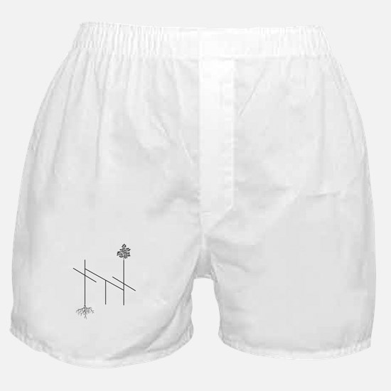Root Chakra Boxer Shorts