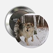 """Winter Wolf 2.25"""" Button"""