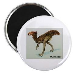 Oviraptor Dinosaur Magnet