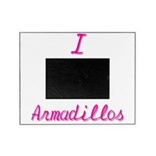I Love/Heart Armadillos Picture Frame
