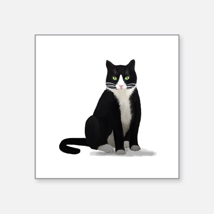 Black and White Tuxedo Cat Sticker