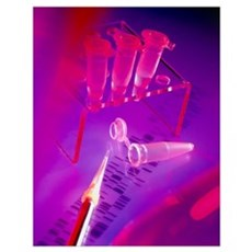 View of microtubes, pipette Poster