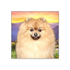 """Pomeranian Meadow Square Sticker 3"""" x 3"""""""