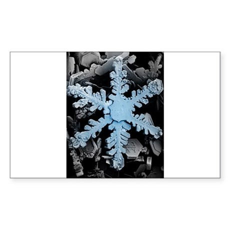A real honest to goodness snowflake Sticker (Recta