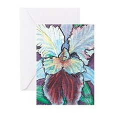 Unique Floral botanical Greeting Cards (Pk of 10)