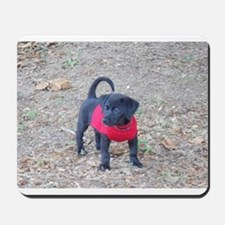 Beagador Puppy Mousepad