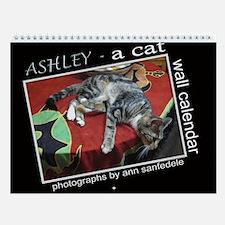 Ashley the tabby cat Wall Calendar